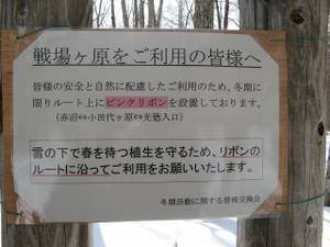 080131_kokuti