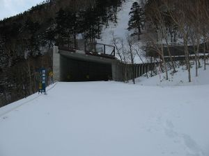 080204_snowshed