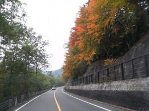 081005_sugenumayoko