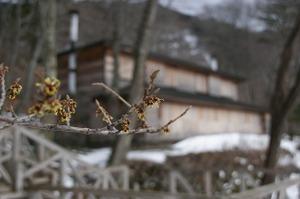 090309_mansaku_2
