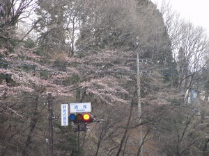 090413_kiyotaki