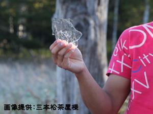 090921_hatukoori