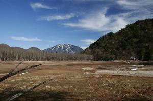 091104_sainoko