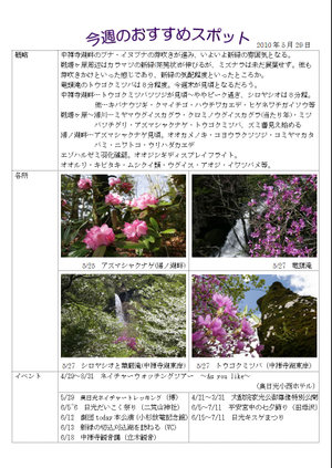 100529_midokoro