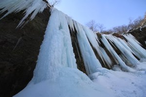 110204_iceage