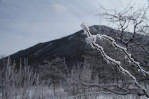 110301_senjou_muhyou