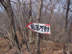 110427_zenisawa_douhyou