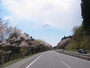 110429_nikkoudou