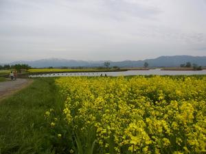 110509_hukusimagata