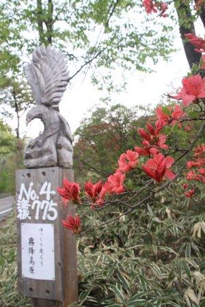 110517_yukkuri