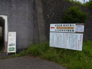 110706_no1_parking_kanban