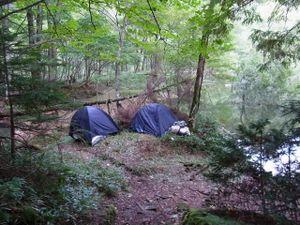 110922_karikomi_camp