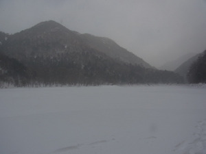 120107_karikomiko