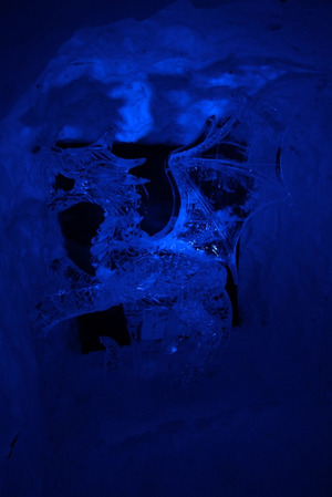 120128_blue_dragon