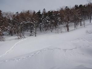 120228_kokkyoudaira