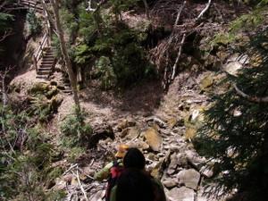 120531_trail