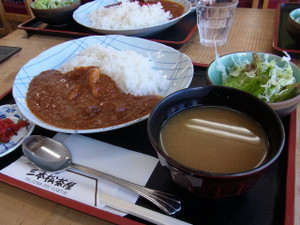 120807_tomatocurry