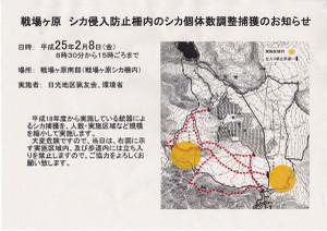 130208_sikakujo