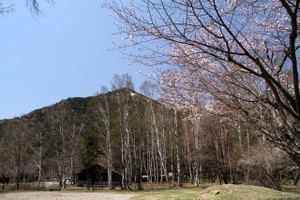 130514_yumotoenti