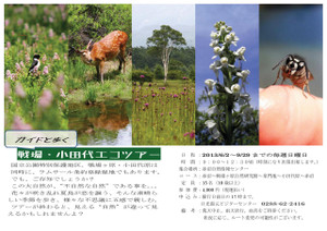 13_senjou_odasiro_ecotour