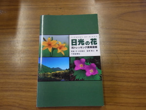 130724_nikkouno_hana