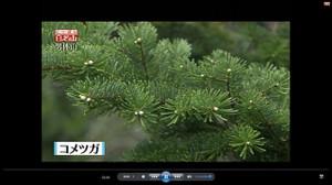 130817_hyakumeizan_capture
