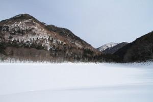 140120_karikomiko