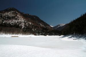140409_karikomi_1121