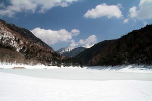 140409_karikomi_1234