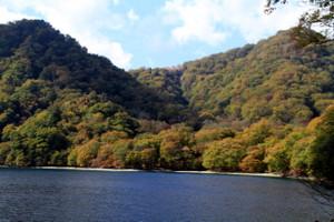 141008_kumakubo