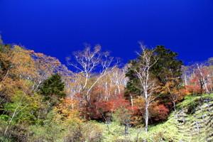 141010_skyline_tutuji