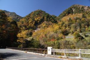 141018_nisizawa