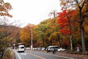 141021_kanayamae