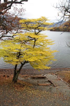 141022_boathouse_yoko