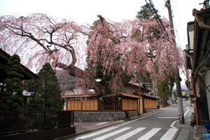 150406_takadake