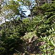 35 黒岩遥拝石~竜巻山4