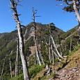 36 黒岩遥拝石~竜巻山5