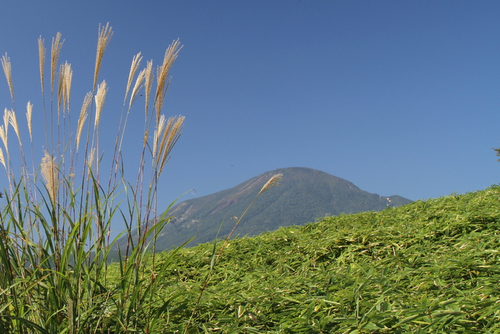12 男体山とススキ