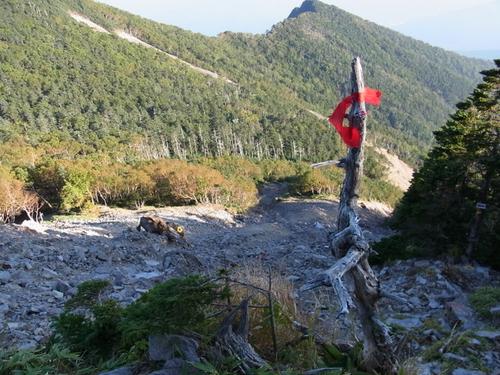 43 唐沢小屋~女峰山頂