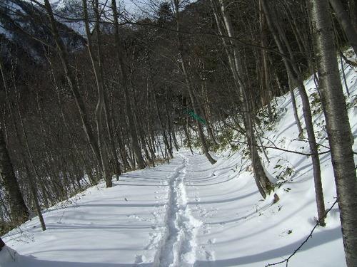20070101 石楠花平コース