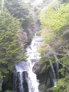 今日の竜頭滝