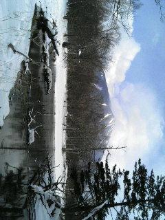 取り急ぎ『湯滝〜泉門池〜小田代原〜赤沼』