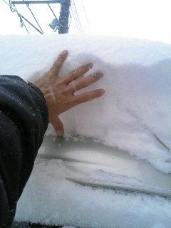 冬再来!!
