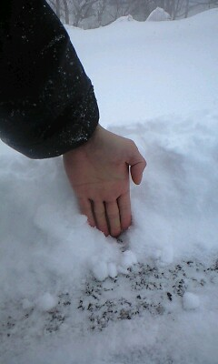 雪だ〜〜〜!!!