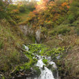紅葉と湧水